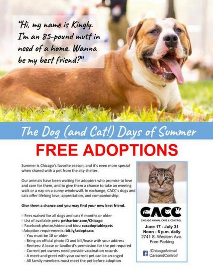 CACC Adoptions