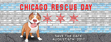 Chicago Rescue Day